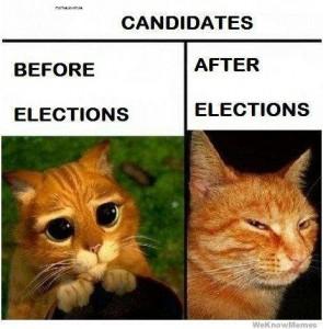 gambar kucing 295x300 - Sebelum Dan Selepas Pilihan Raya